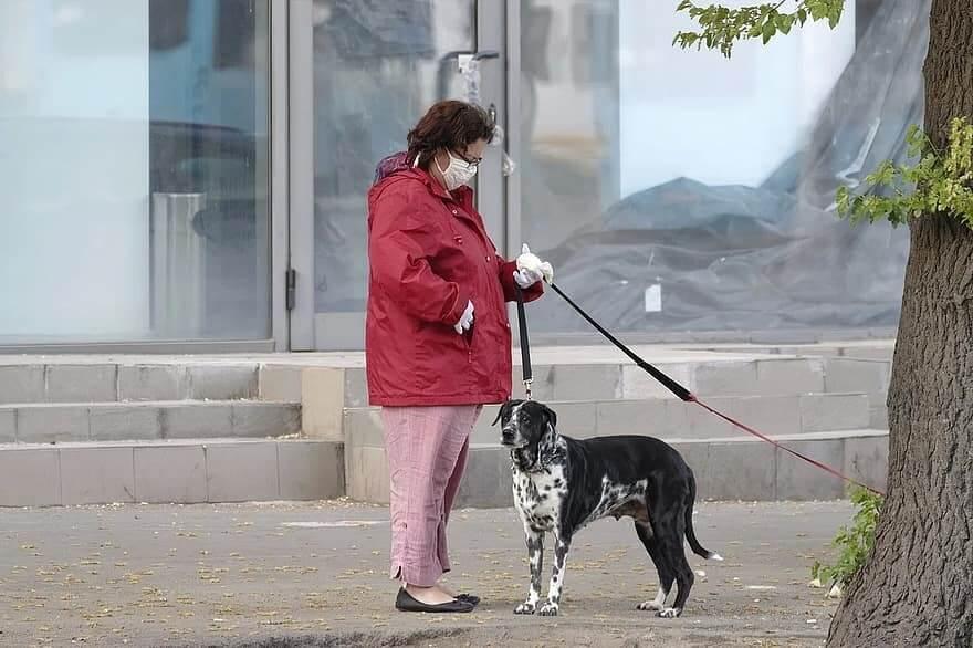woman-wearing-face-mask-walking dog during pandemic
